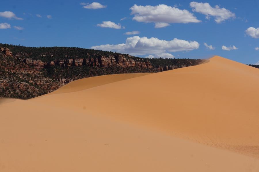 Sand-dunes-1.jpg