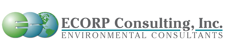 ECORP Consulting Inc.png