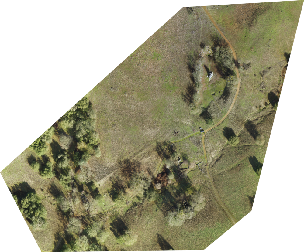 UAV site orthophoto: click to enlarge