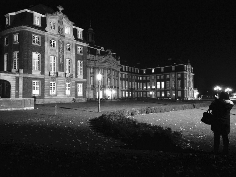 University castle of Münster at night