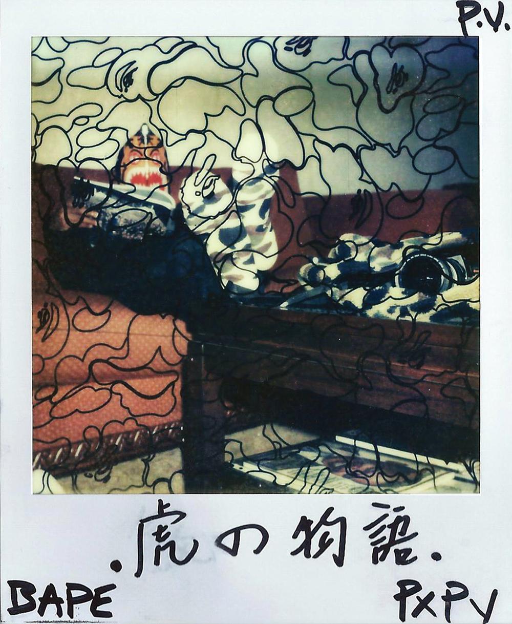 tiger book b.jpg