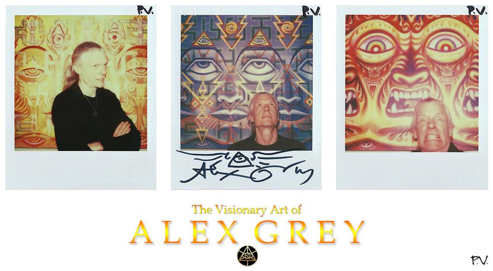 alex collage.jpg