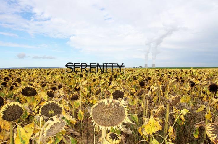 Sans titre (SERENITY), 2013