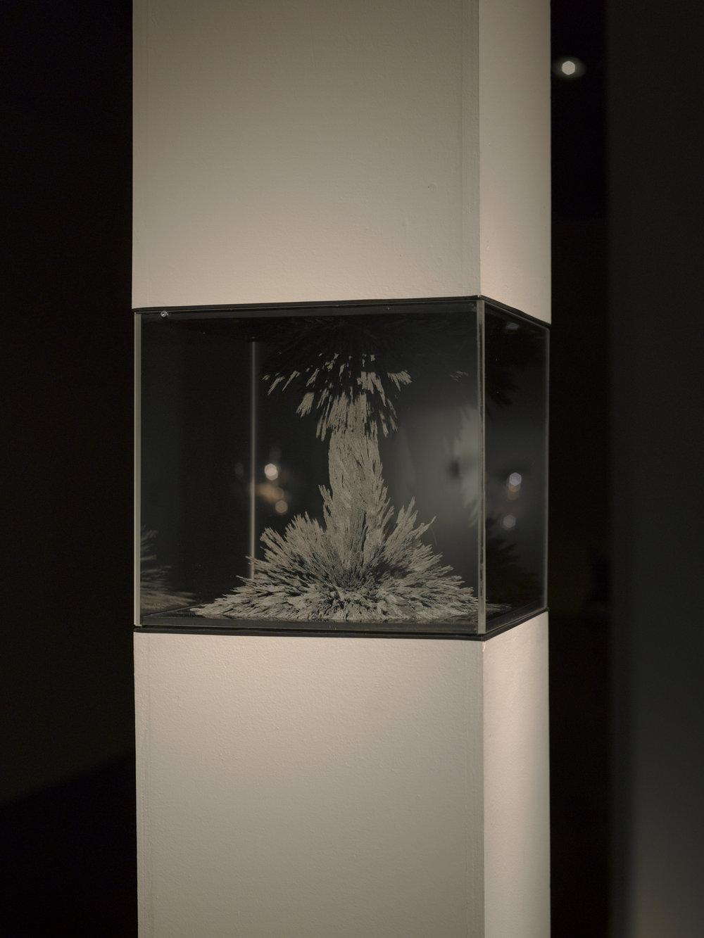 Maquette pour colosse, 2011