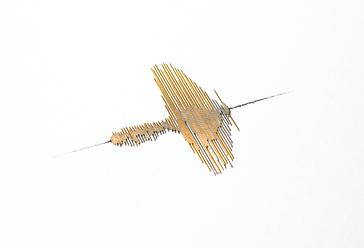 B-coté-2.jpg