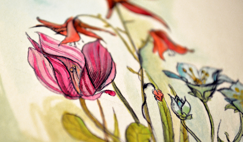 tomlohner flowers2 150.jpg