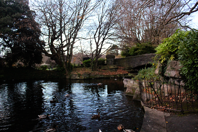 St. Stephen's Green Pond Dublin Ireland