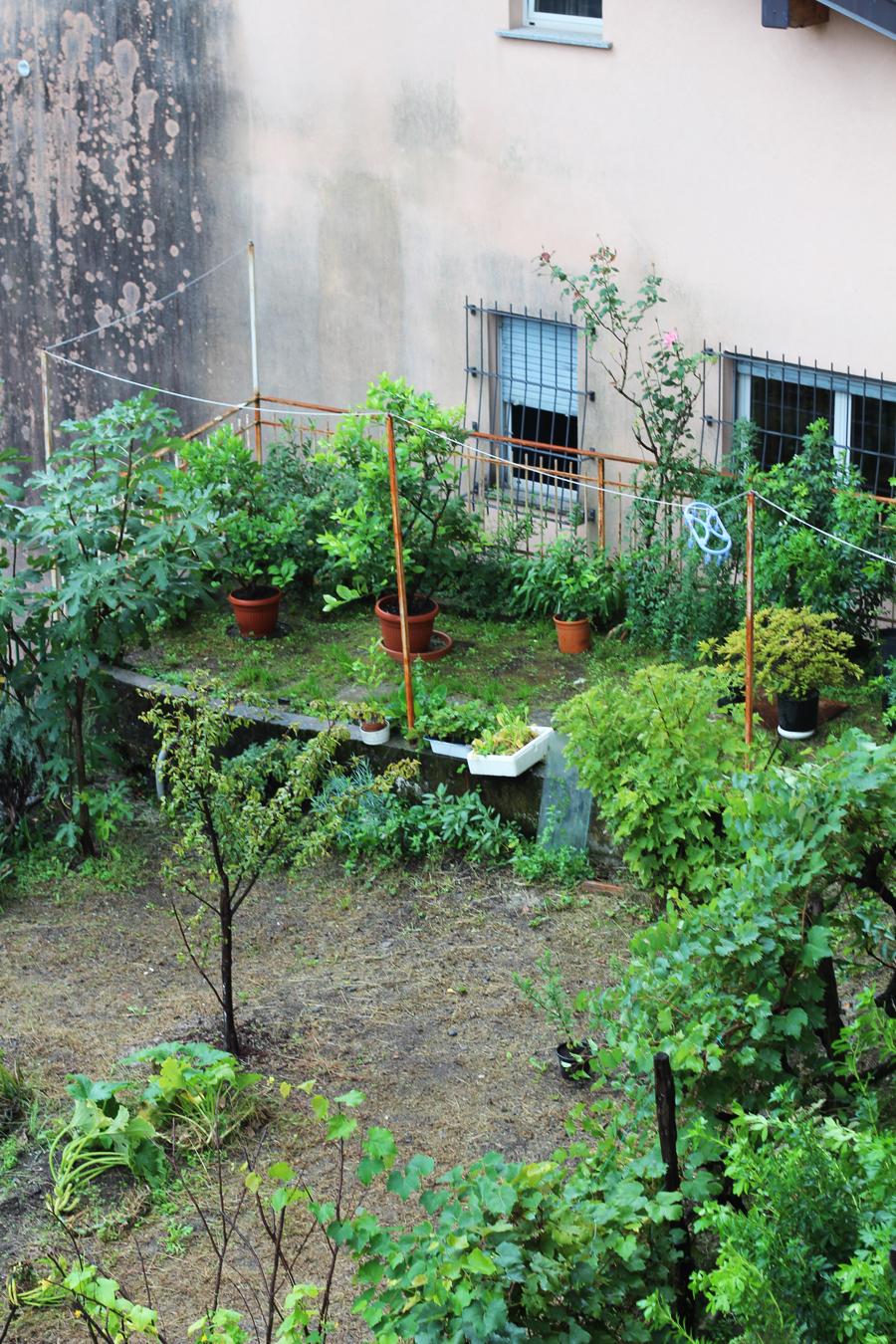 Laglio Italy garden