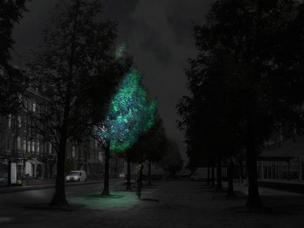Studio Roosegaarde's visualization of a light-emitting tree with a bio-luminescent coating, as seen on  Dezeen.com .