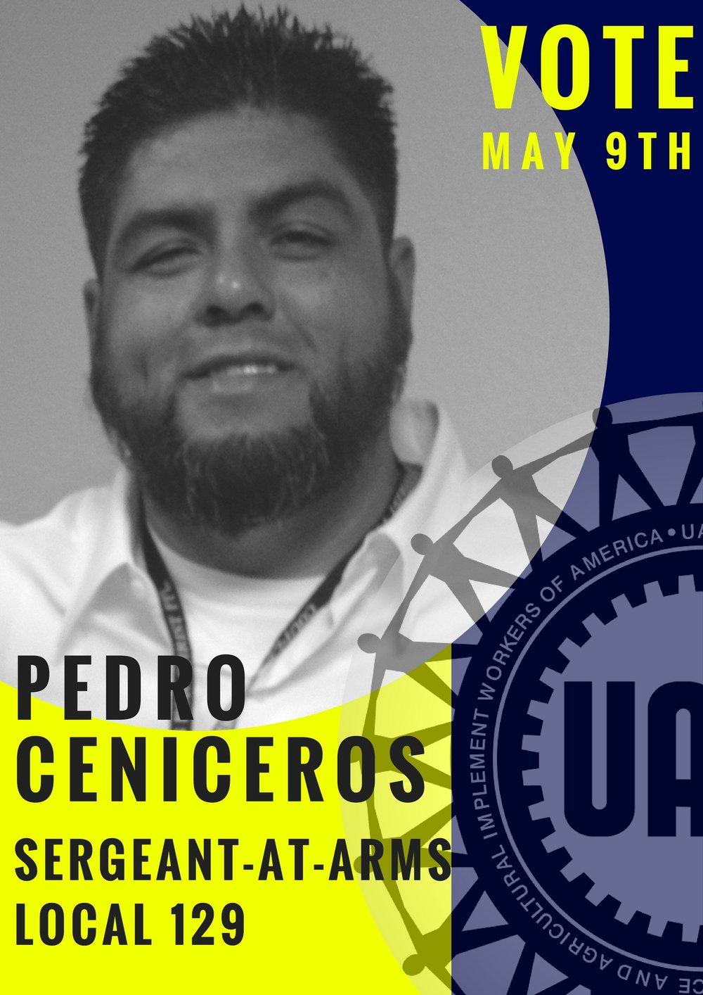 Vote Pedro.jpg