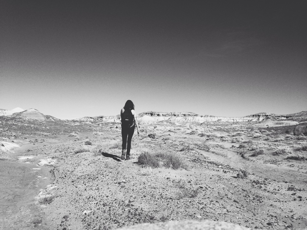 Back country exploring, The Petrified Forest, Arizona