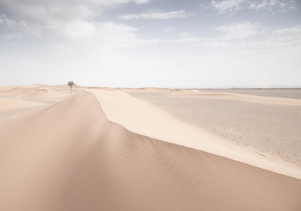 Desert_SS.jpg