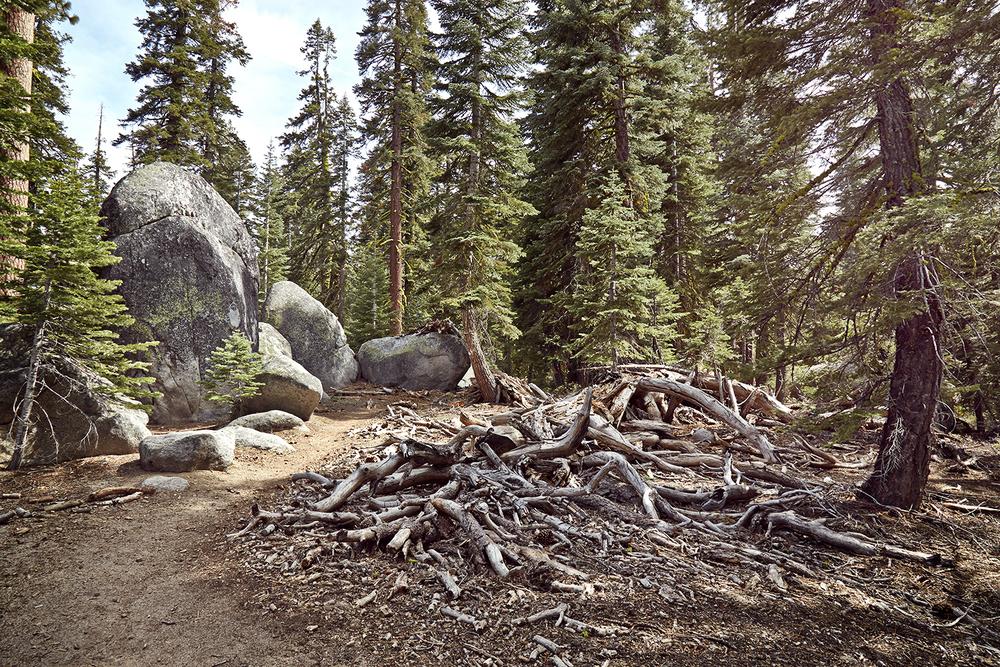 Yosemite6_SS.jpg