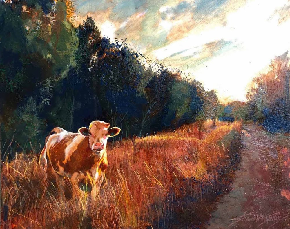 'Bull Creek Cow'