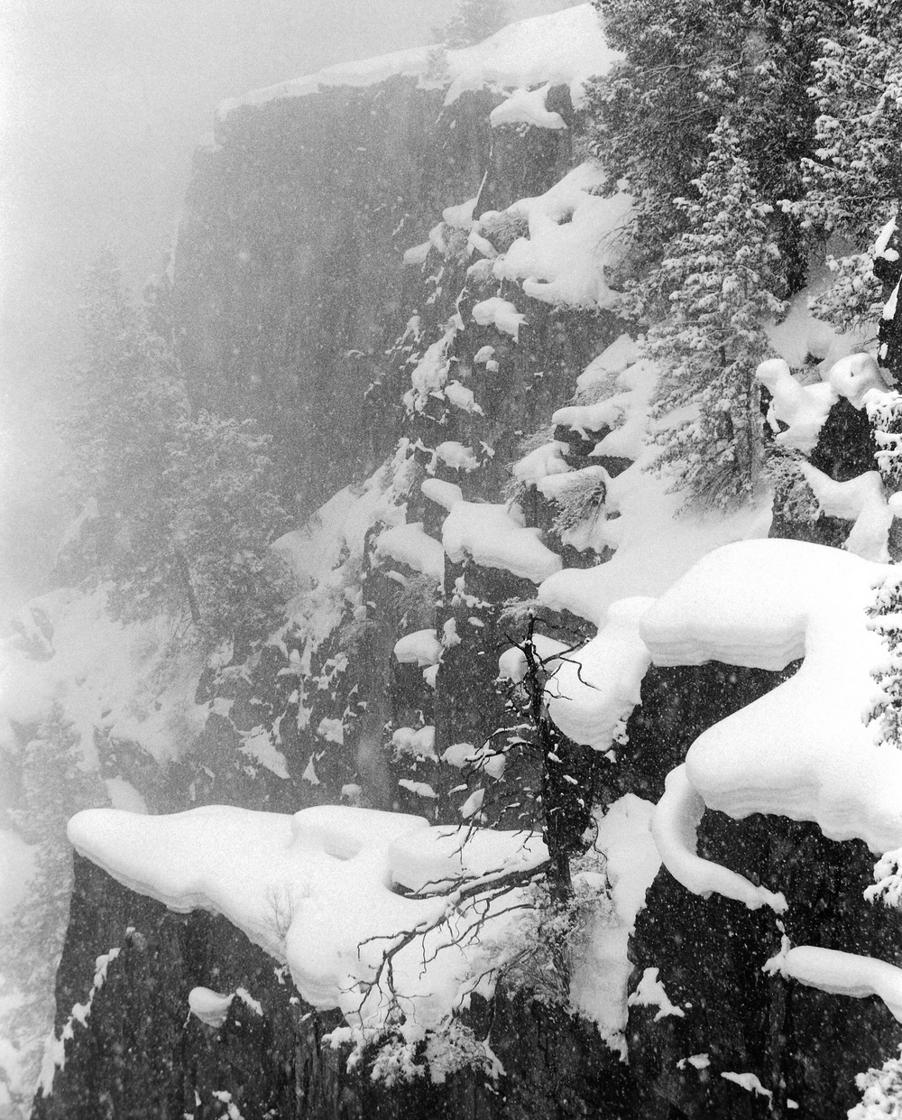 Snow Storm in Black Canyon of the Gunnison