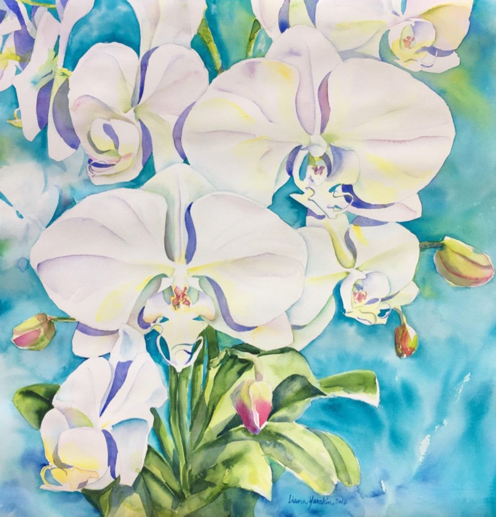 White Orchids on Aqua