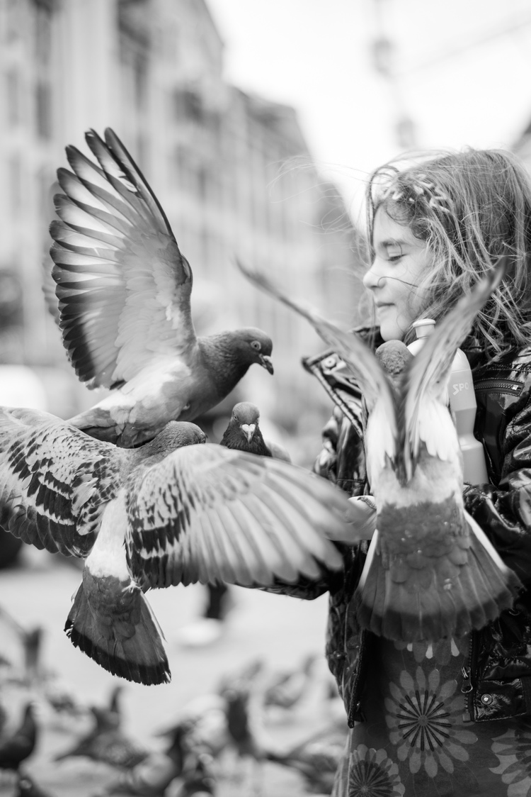 Mikael Bang Anderson - The Doves And A Girl Amsterdam (http://mikaelbangandersen.com/street/)