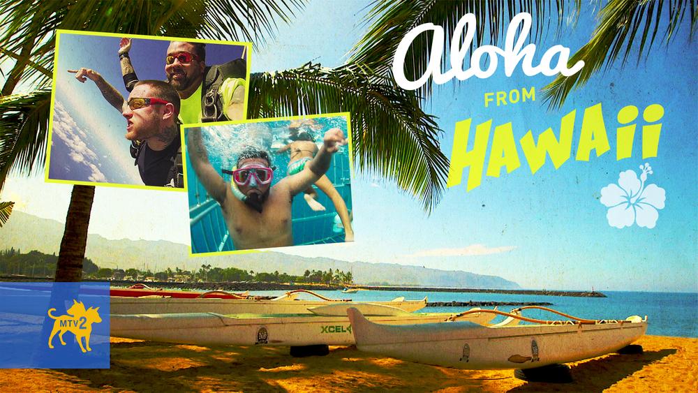 hawaii-postcard-v3.jpg