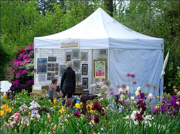 Schreiner's Iris Festival
