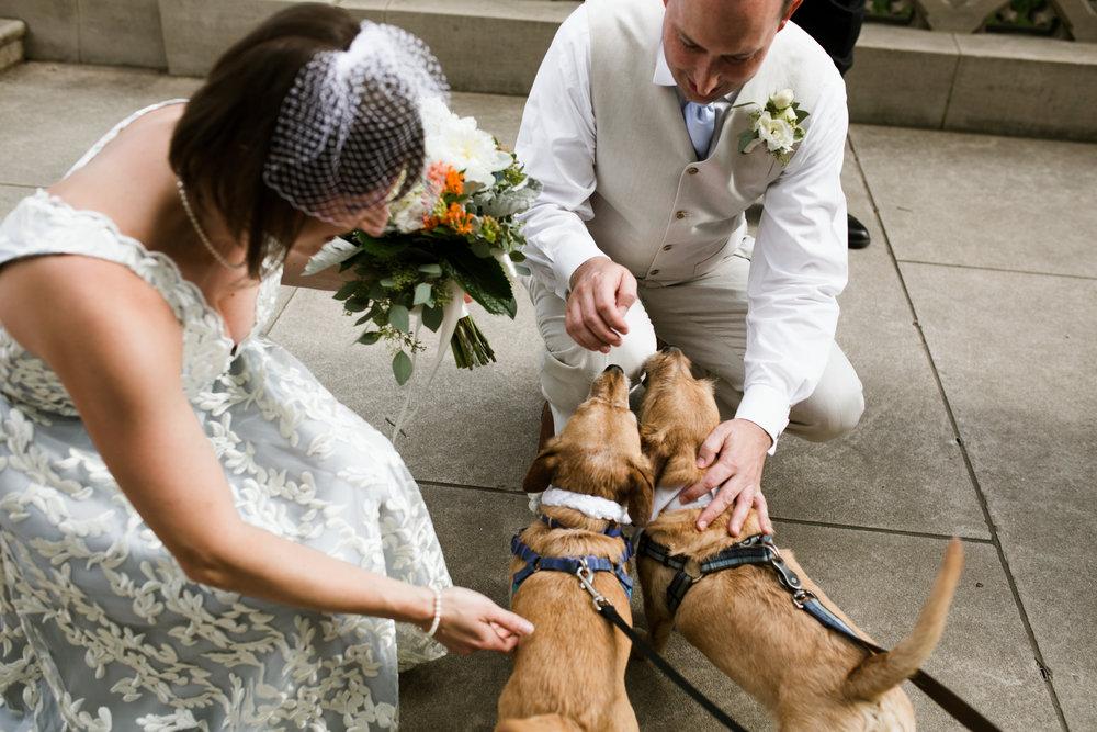 Kentucky Wedding Louisville Wedding Photographer 2018 Crystal Ludwick Photo Louisville Wedding Photographer Kentucky Wedding Photographer (60 of 122).jpg