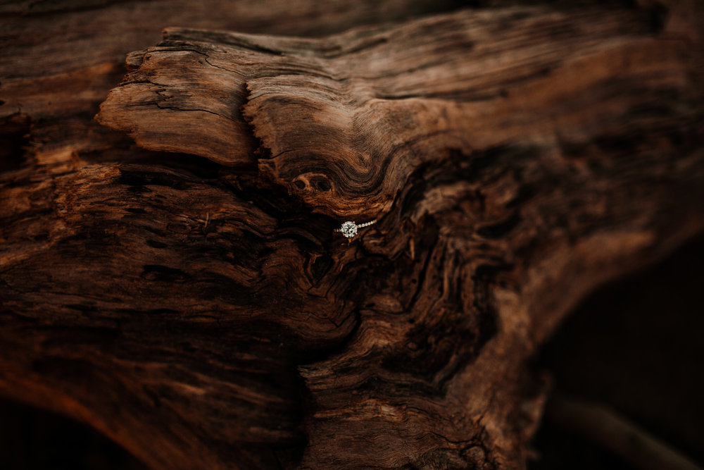louisville-engagement-photographer-crystal-ludwick-photo-tammy-and-caleb-engagement-photography (2 of 32).jpg