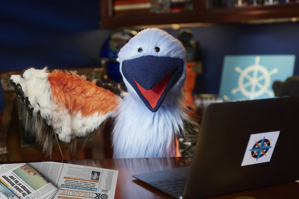 STO FY16 SOCIAL Post Graphic - Puppet_and_Laptop - MARCH.jpg