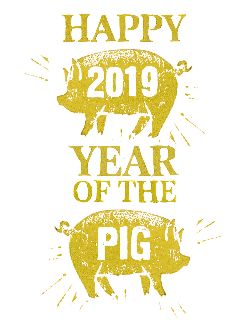 2019 year of the pig_lg.jpg
