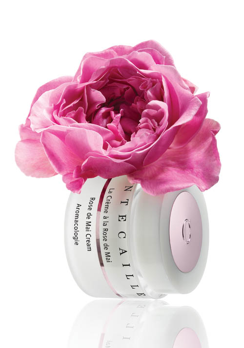 Chantecaille Rose De Mai Cream , $210