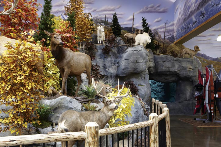 Plan to stop in Cabela's even if you don't own a rifle; their mounted wildlife displays are museum-quality.