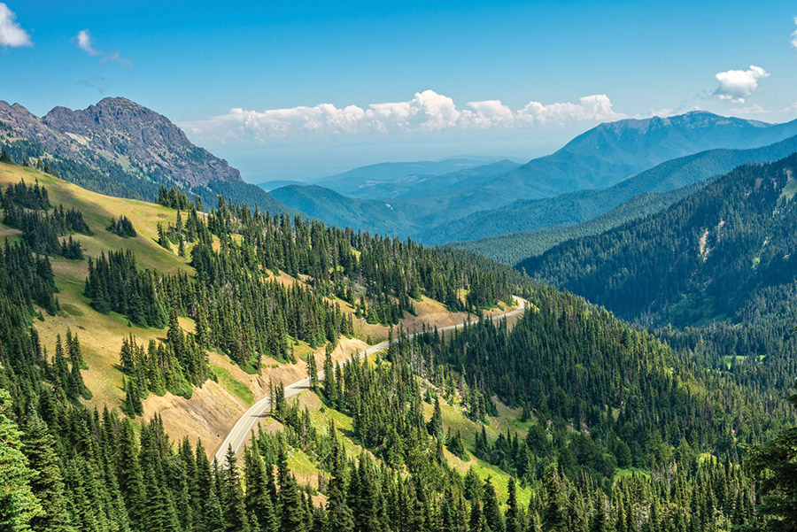Olympic National Park, Washington. (bjul/shutterstock.com )