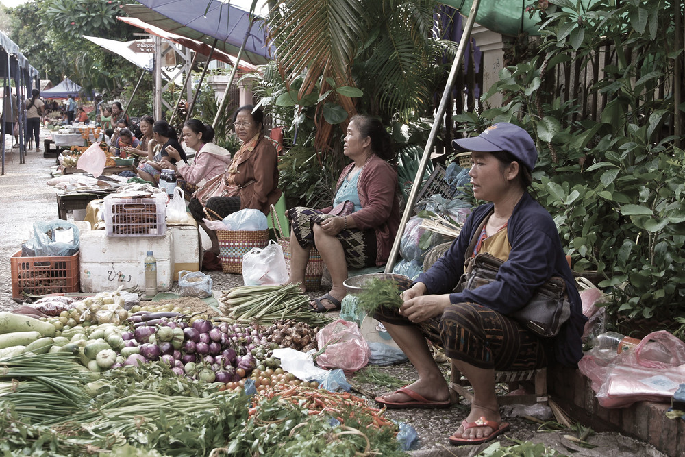 Local hill tribe women selling their fresh food produce at the local market in Luang Prabang, Laos.