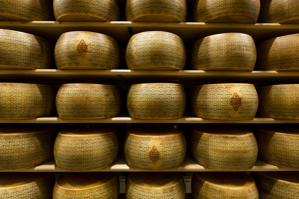 Grana Padano is aged for a minimum of 9 months. (Image courtesy of Grana Padano Consortium)