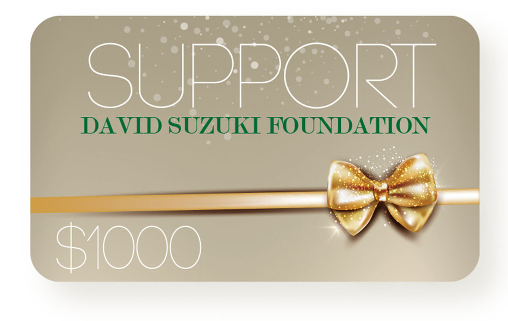 Support the David Suzuki Foundation $1,000,  davidsuzuki.org