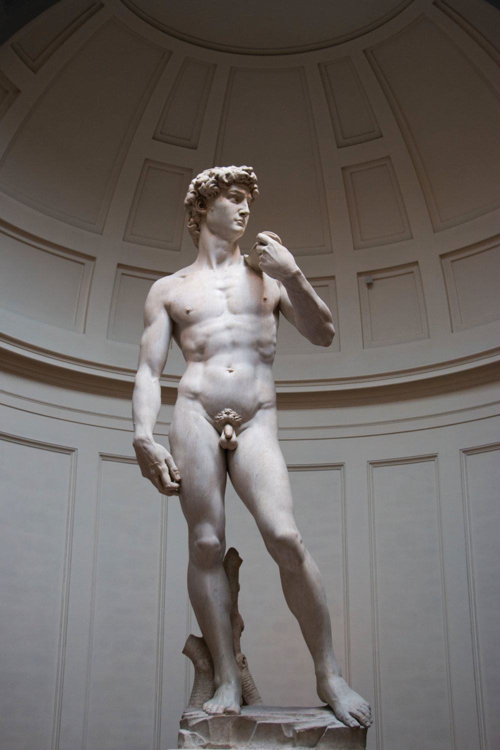 Five years after his Pieta gained him acclaim, 29-year-old Michelangelo debuted David and carved his reputation as a master sculptor of the Renaissance. Shoriful Chowdhury / Shutterstock.com
