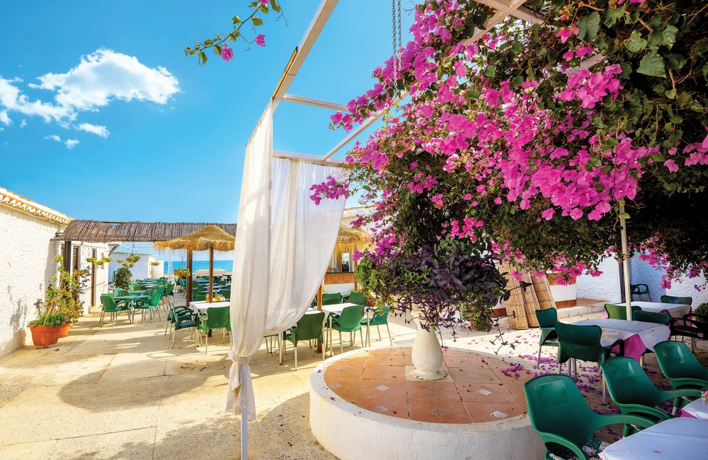 Bougainvillea shades diners at this seaside cafe;Valery Bareta / Shutterstock.com