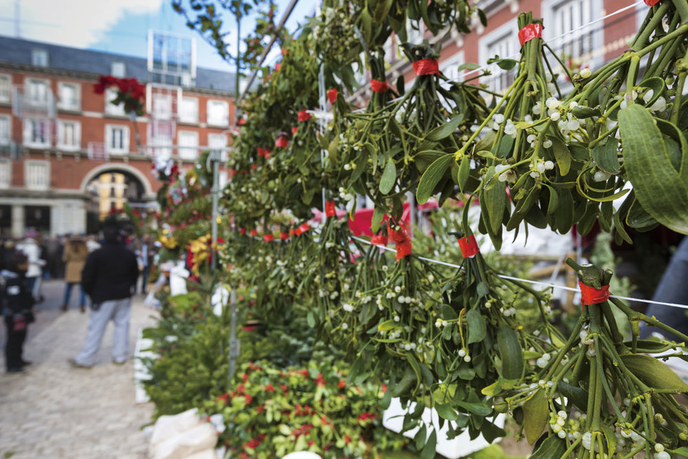 Products from the Viennese Christmas market: Vertical herb and floral garlands;Curioso/Shutterstock;