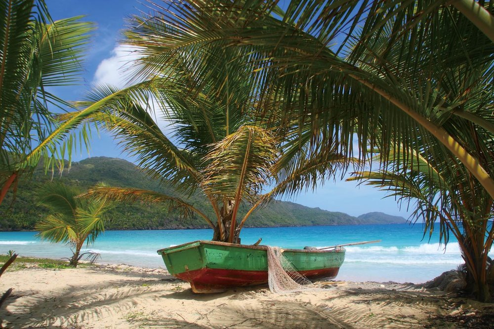 Rincon Beach is known for its thick rows of palm trees, a stretch of powder-fine sand and turquoise waters.