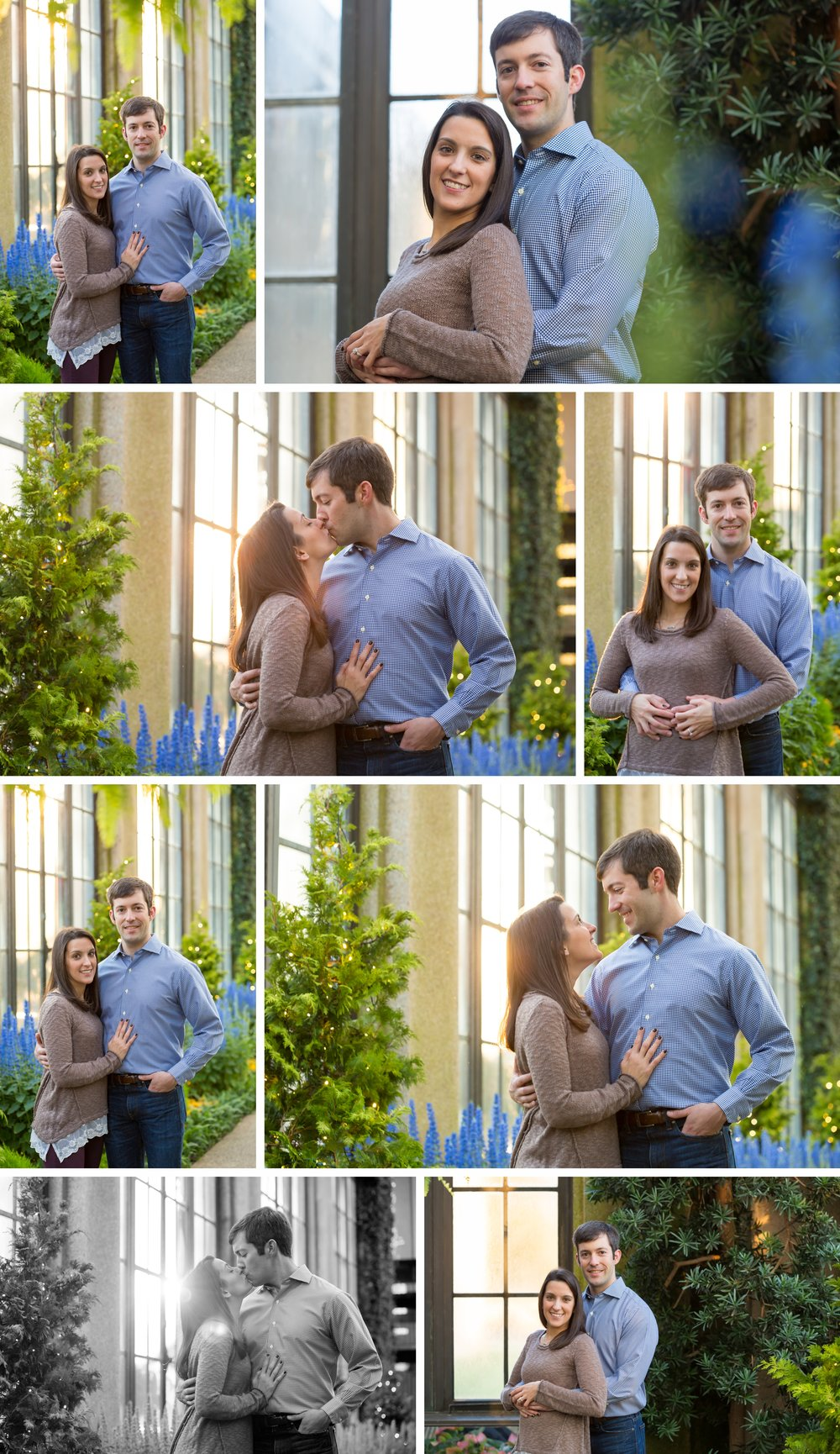 engagement longwood gardens