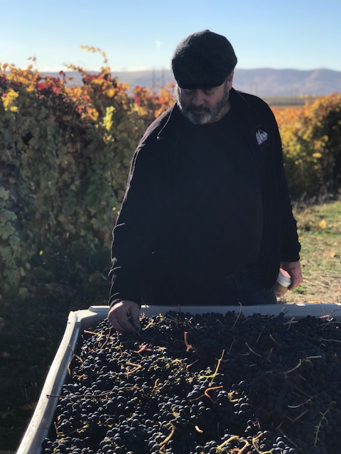 Our winemaker, Jim Wilford, at the Crawford Vineyard