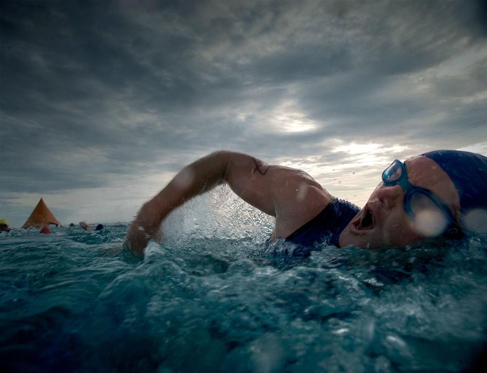 The Swim.jpg