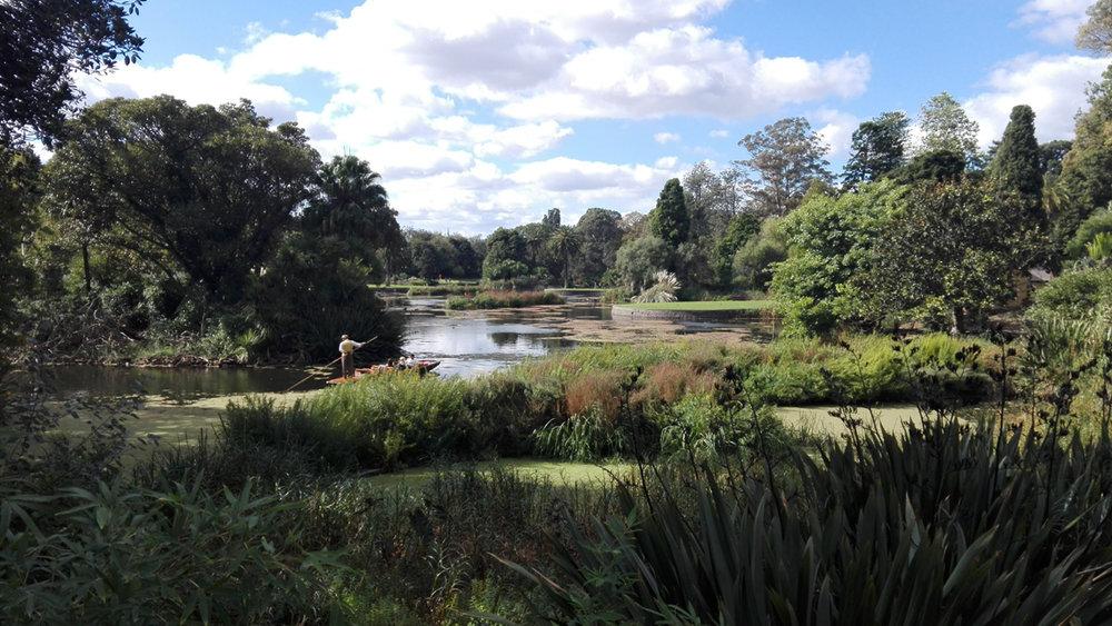 Botanic 16.jpg