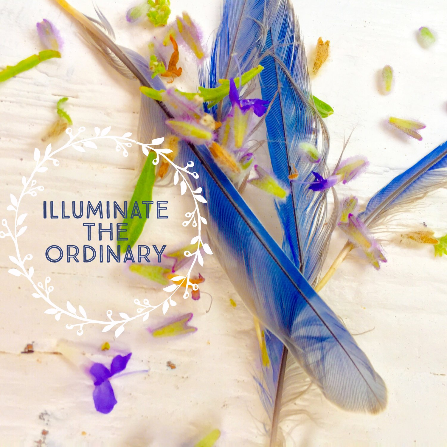 Illuminate The Ordinary