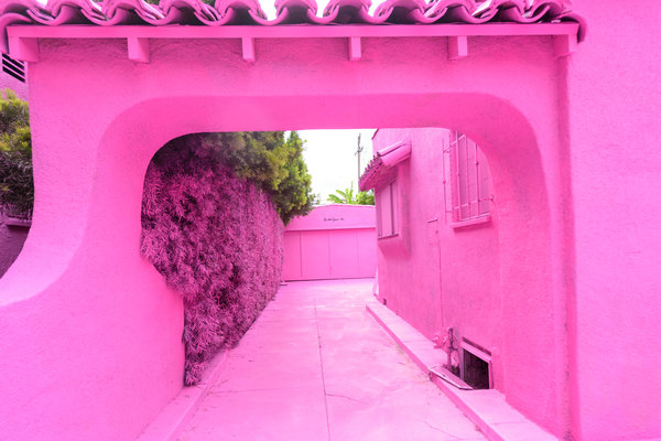 Pink_House.png