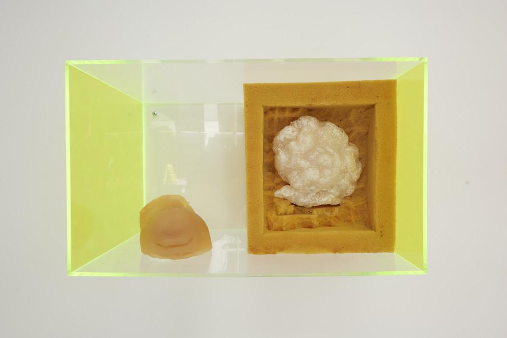 Whitney Vangrin Soft Jaw, 2013 DragonSkin silicone rubber, salt, upholstery foam, Plexiglas 20 x 12 x 12 in