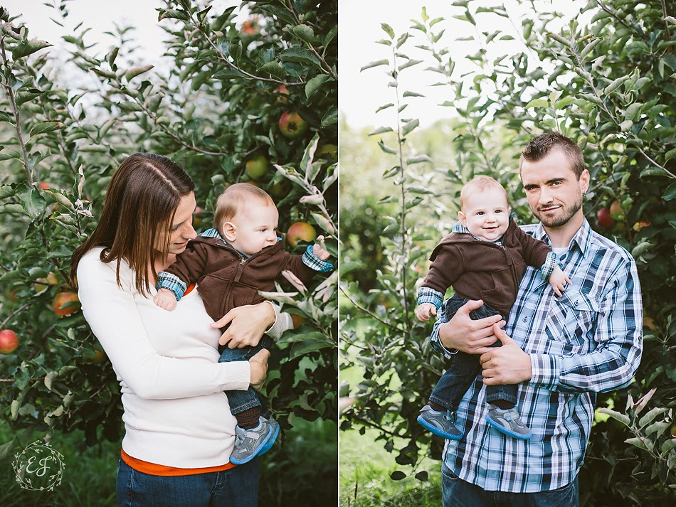 Behling Orchard 5.jpg