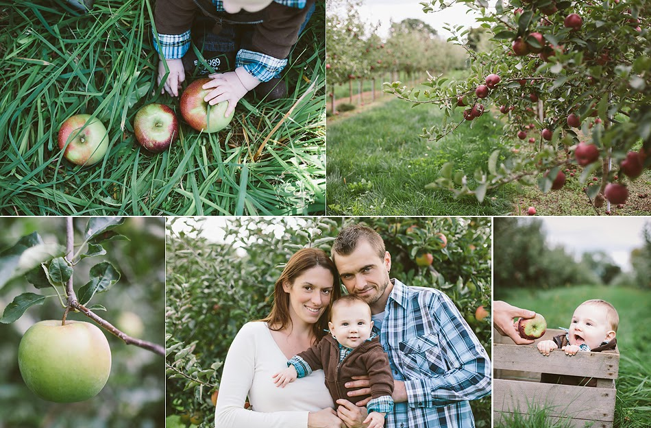 Behling Orchards.jpg