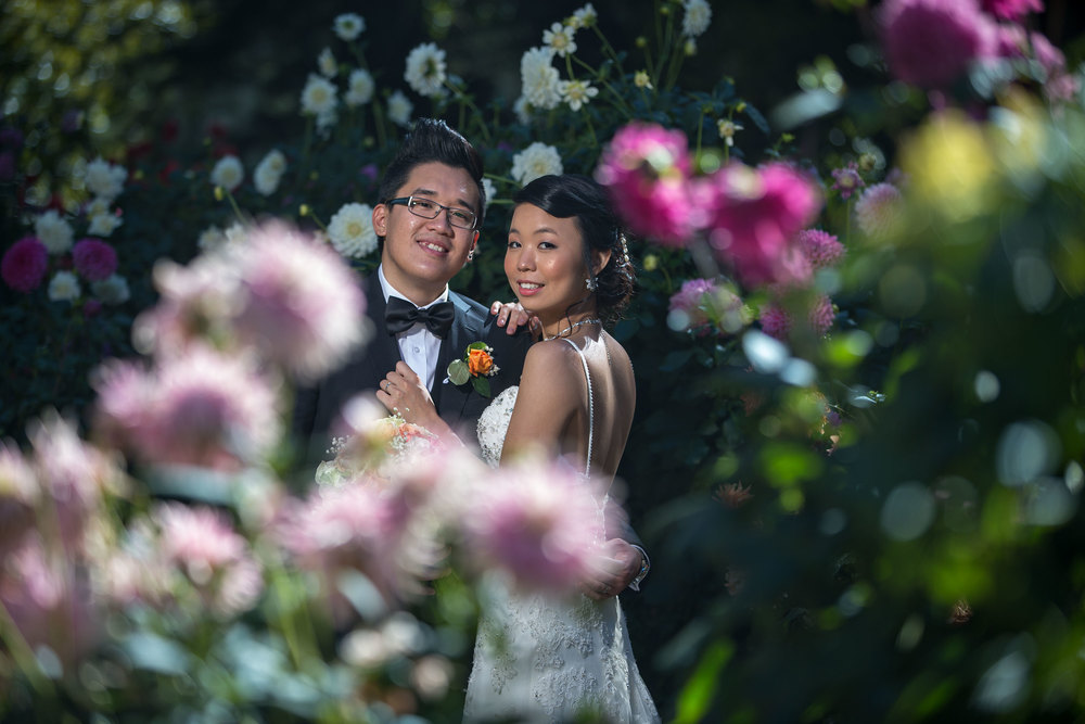 bride and groom in botanic gardens