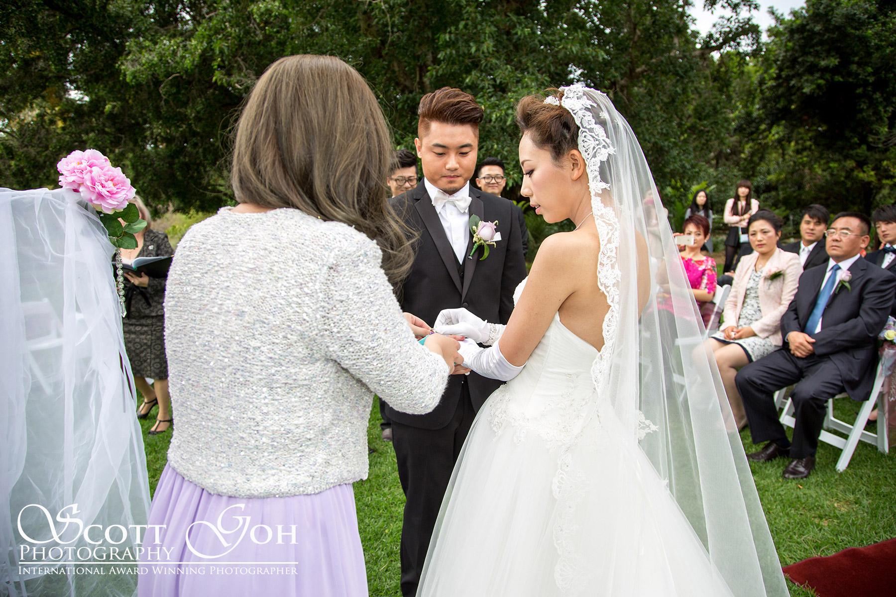 婚纱摄影 (54)