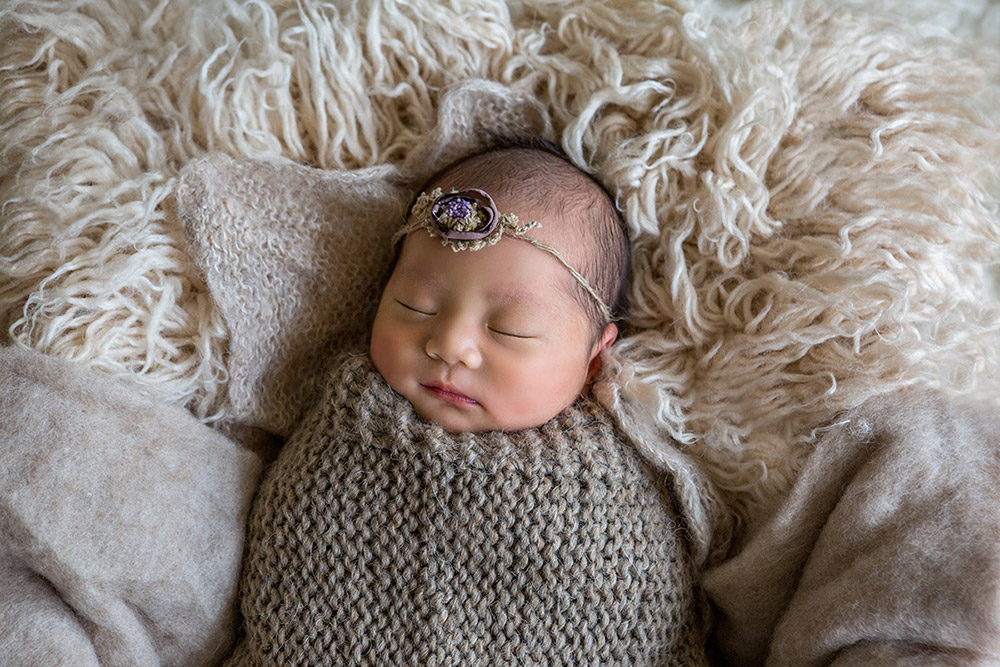 adelaide newborn photography