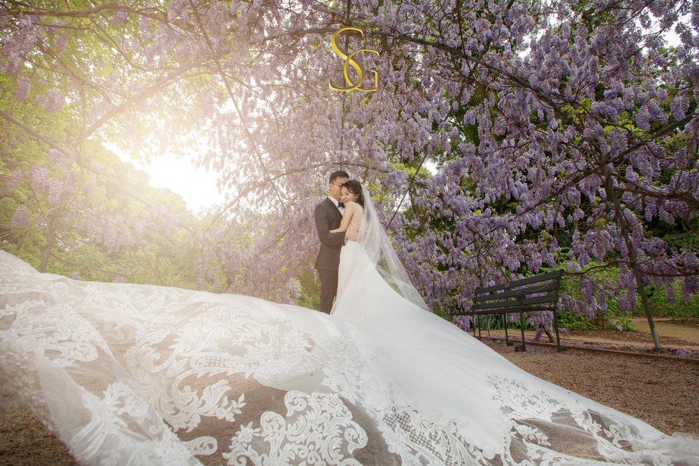 botanic garden adelaide wedding SA photo